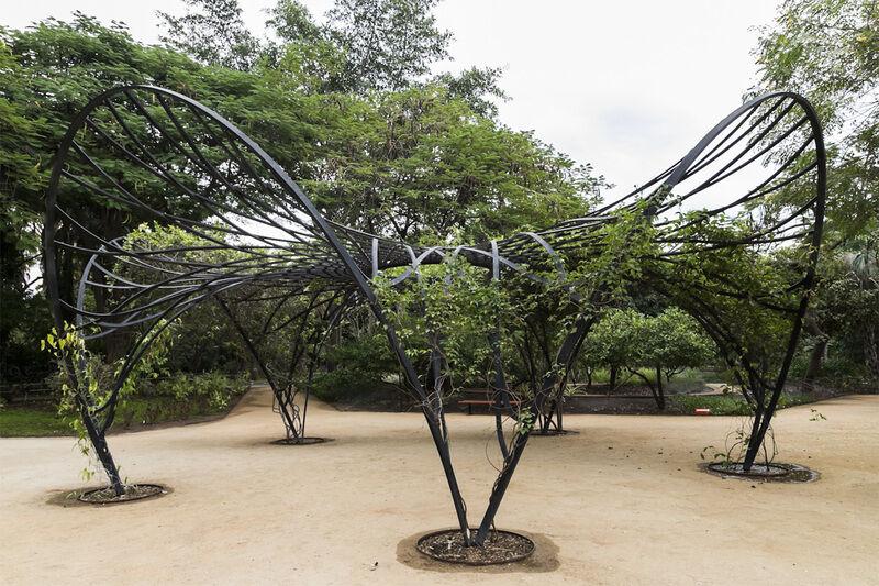 Jard n bot nico culiac n coolhuntermx for Jardin botanico nocturno 2016