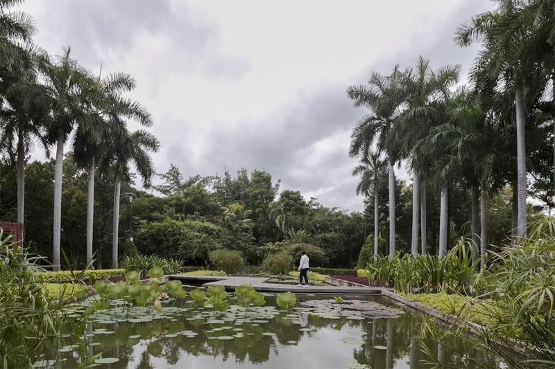 Jard n bot nico culiac n coolhuntermx for Jardin botanico 2016